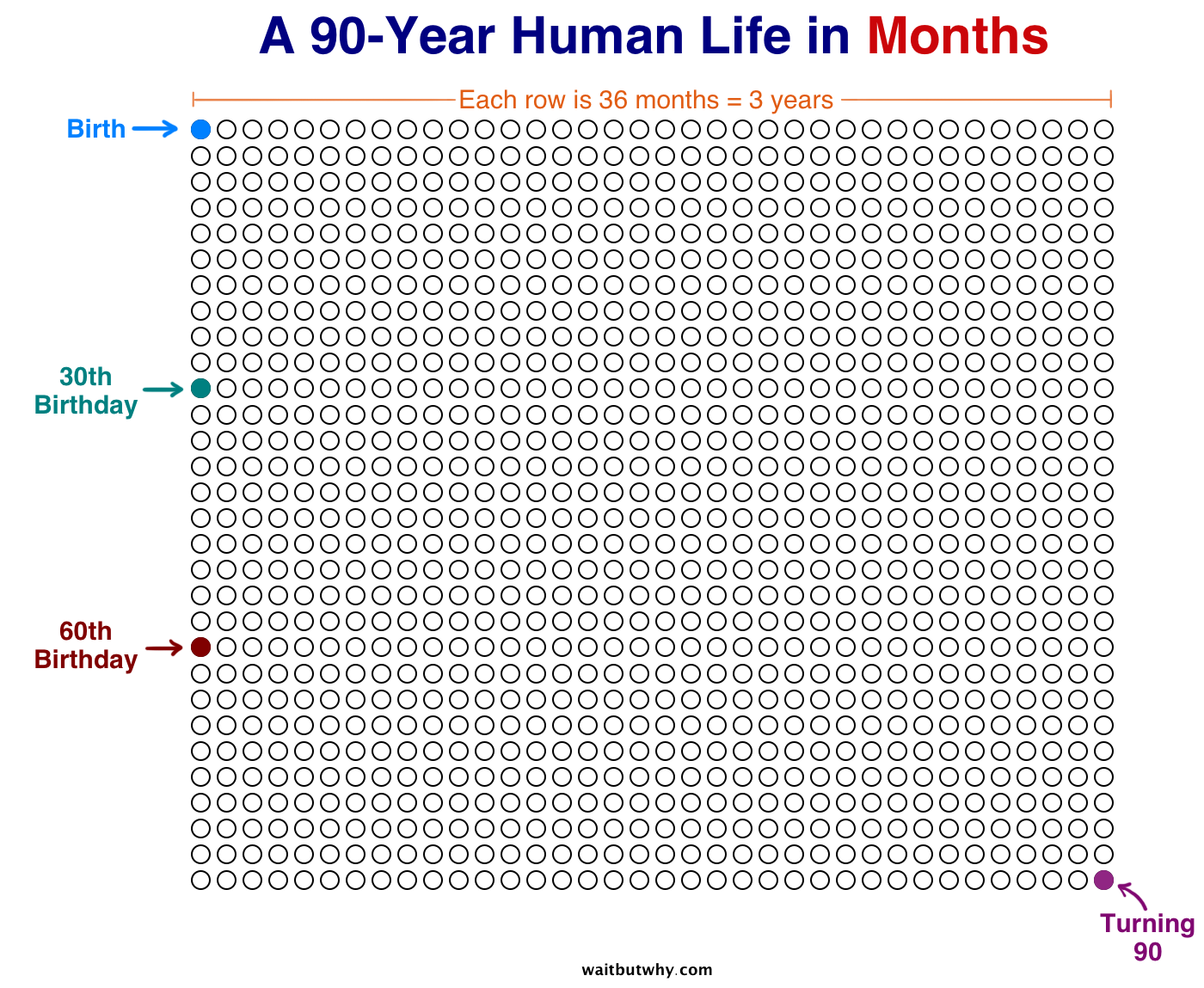 Human Life in Months